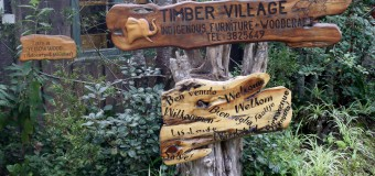 Reawakening Knysna's timber industry